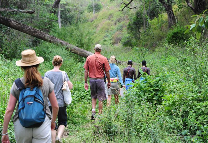 walking-safaris-in-the-bush-copy